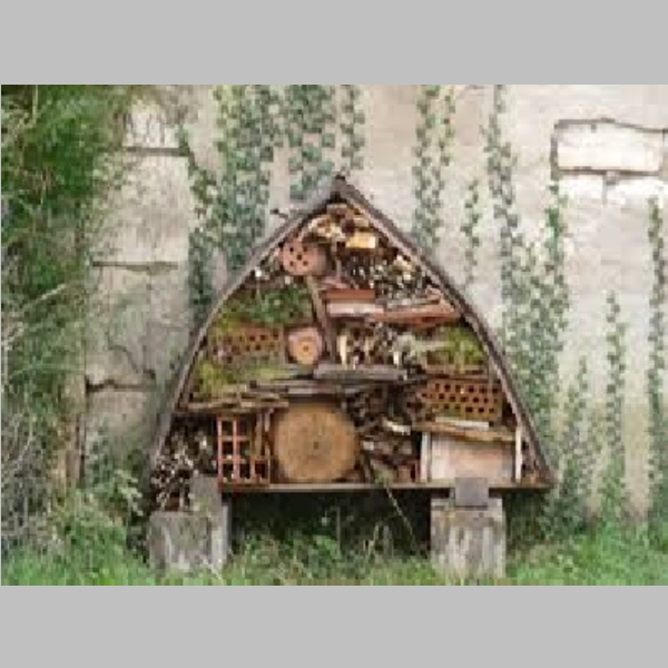 Insect_Hotel_15.jpg