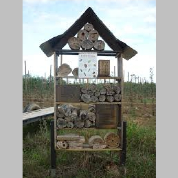 Insect_Hotel_1.jpg