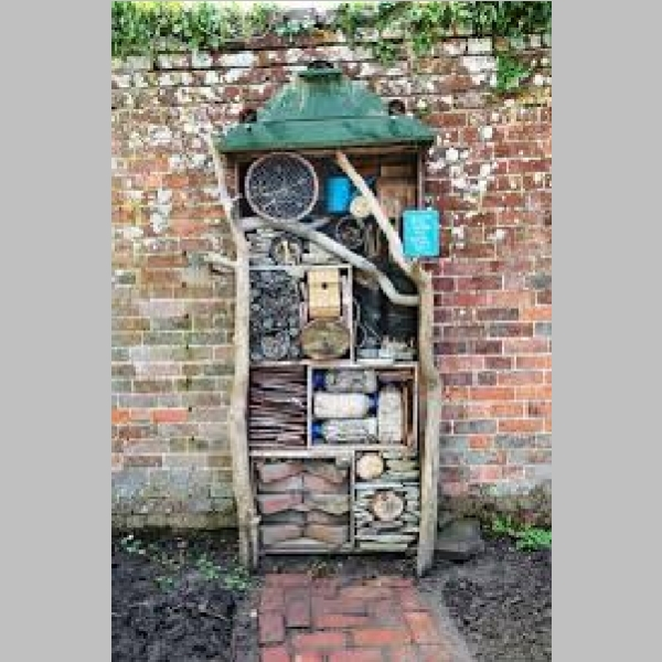 Insect_Hotel_22.jpg