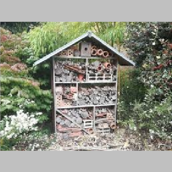Insect_Hotel_25.jpg