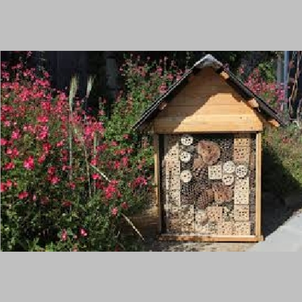 Insect_Hotel_31.jpg