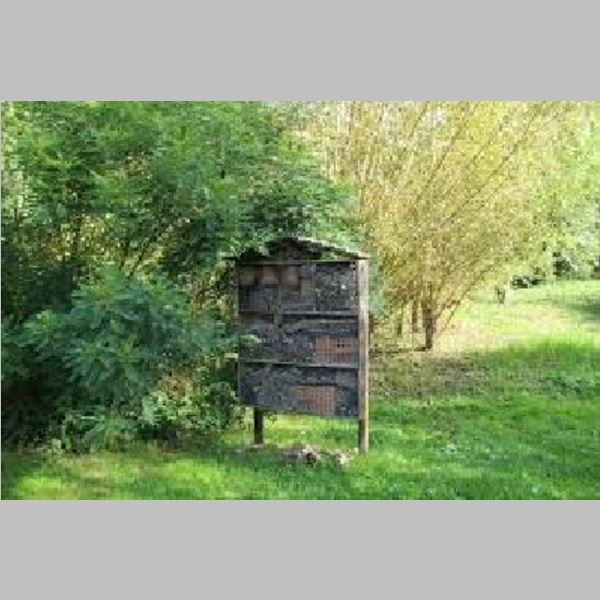 Insect_Hotel_32.jpg