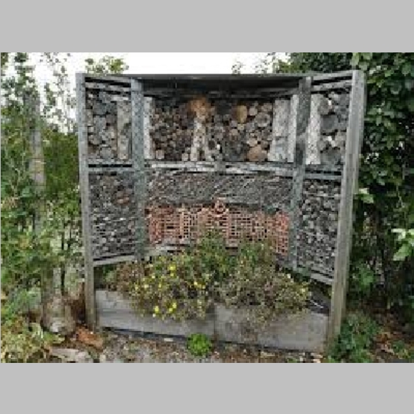Insect_Hotel_35.jpg
