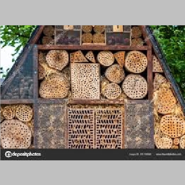 Insect_Hotel_36.jpg