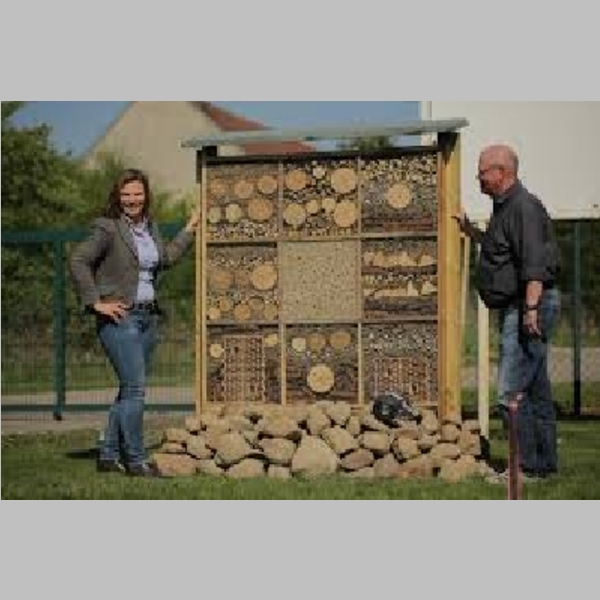Insect_Hotel_38.jpg