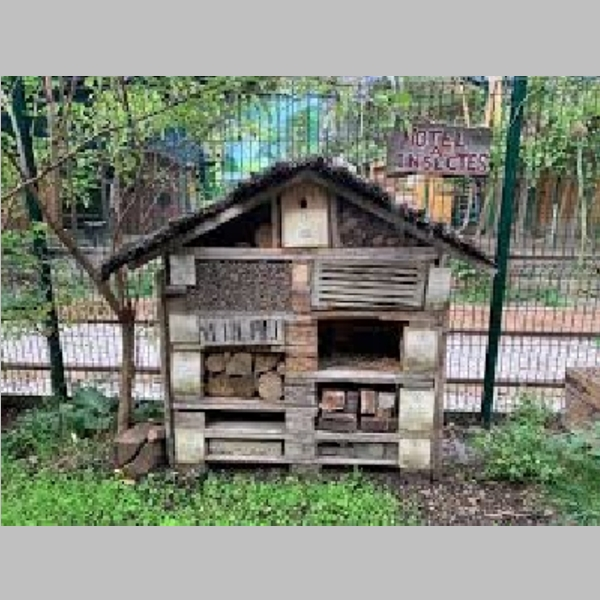 Insect_Hotel_39.jpg