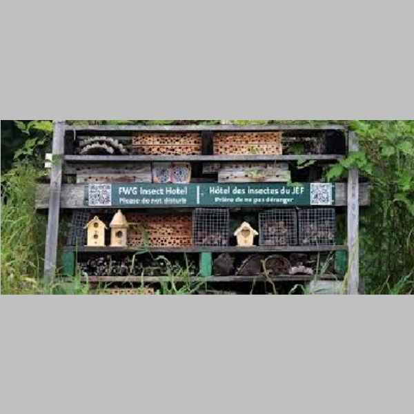 Insect_Hotel_46.jpg