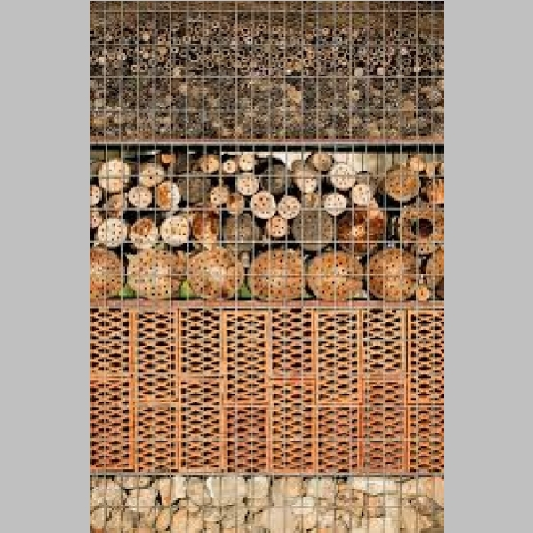 Insect_Hotel_53.jpg