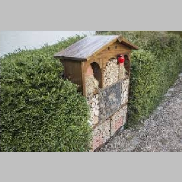 Insect_Hotel_55.jpg