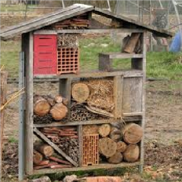 Insect_Hotel_10.jpg