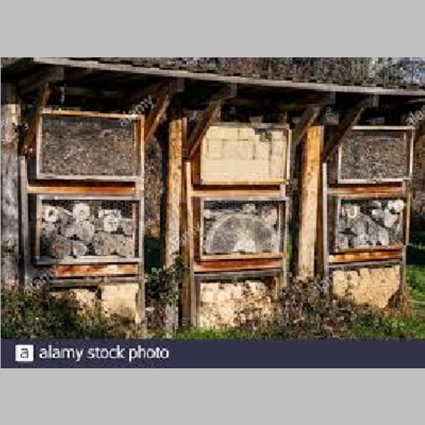 Insect_Hotel_23.jpg