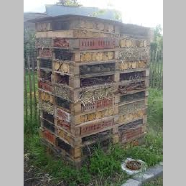 Insect_Hotel_24.jpg
