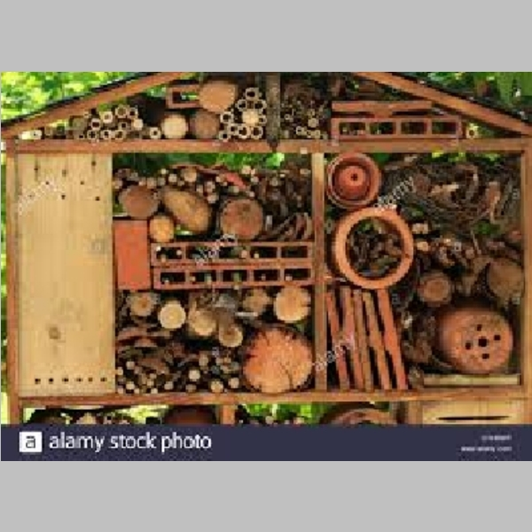 Insect_Hotel_26.jpg