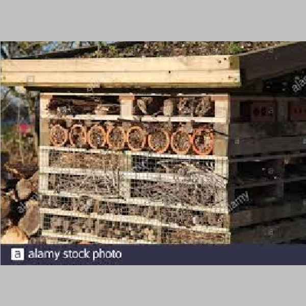Insect_Hotel_30.jpg