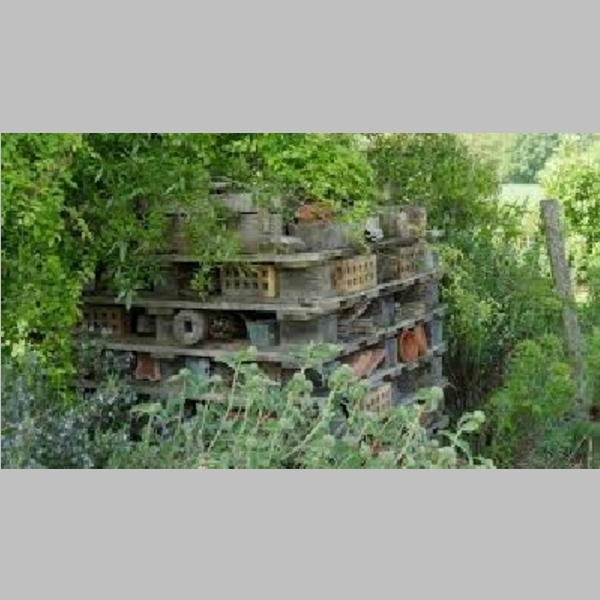 Insect_Hotel_37.jpg