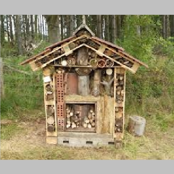 Insect_Hotel_40.jpg