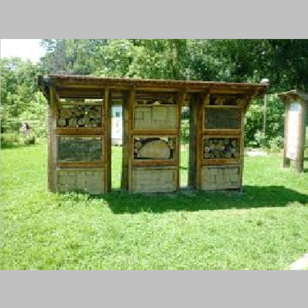 Insect_Hotel_41.jpg