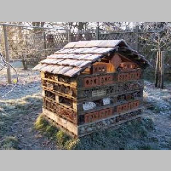 Insect_Hotel_42.jpg