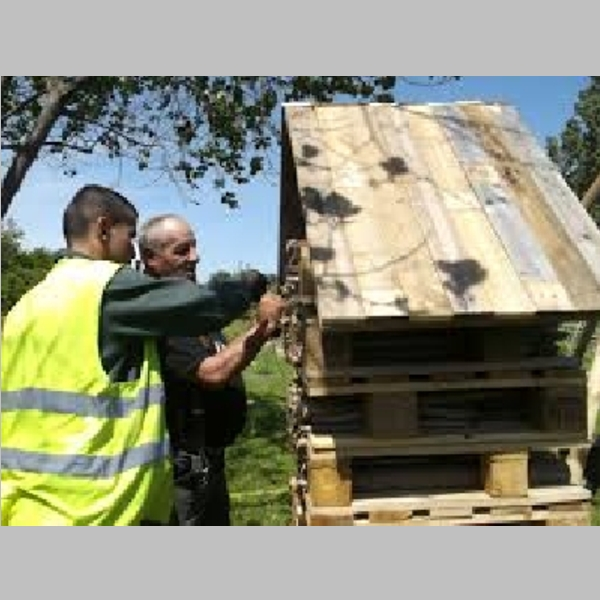 Insect_Hotel_48.jpg