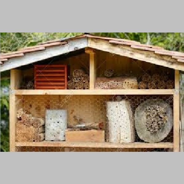 Insect_Hotel_51.jpg