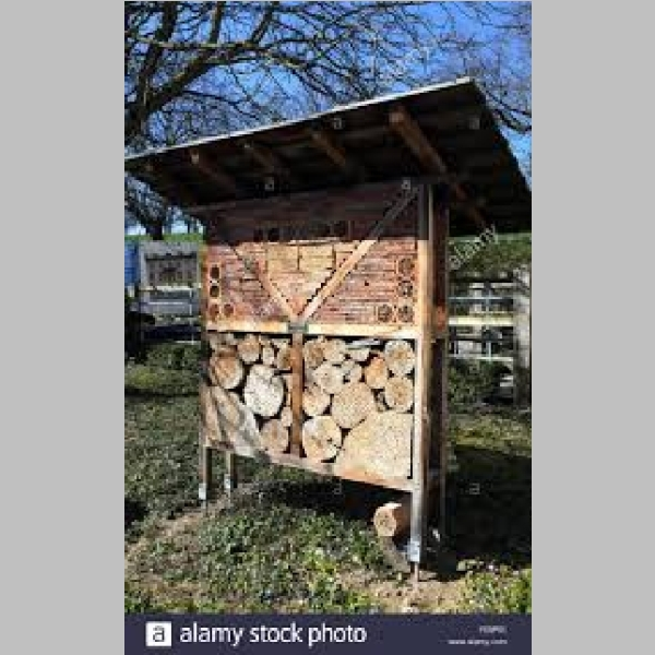 Insect_Hotel_6.jpg
