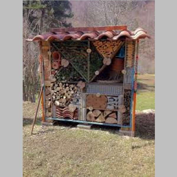 Insect_Hotel_9.jpg